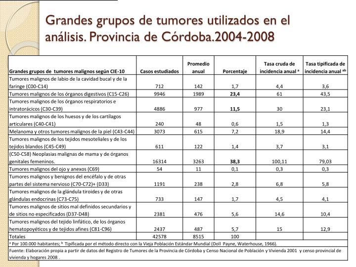 Grandes grupos de tumores utilizados en el análisis. Provincia de Córdoba.2004-2008