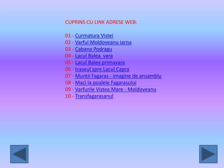 CUPRINS CU LINK ADRESE WEB: