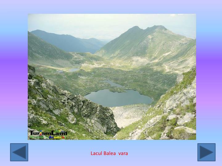 Lacul Balea  vara