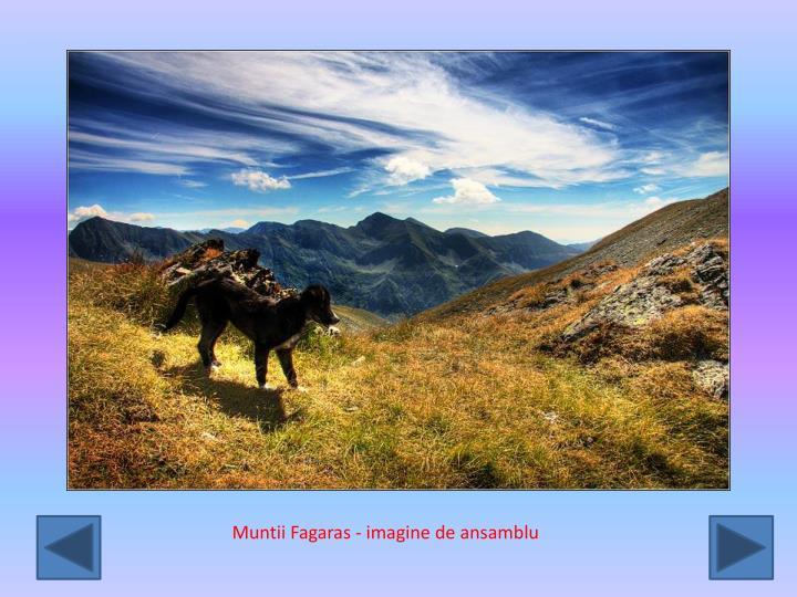 Muntii Fagaras - imagine de ansamblu