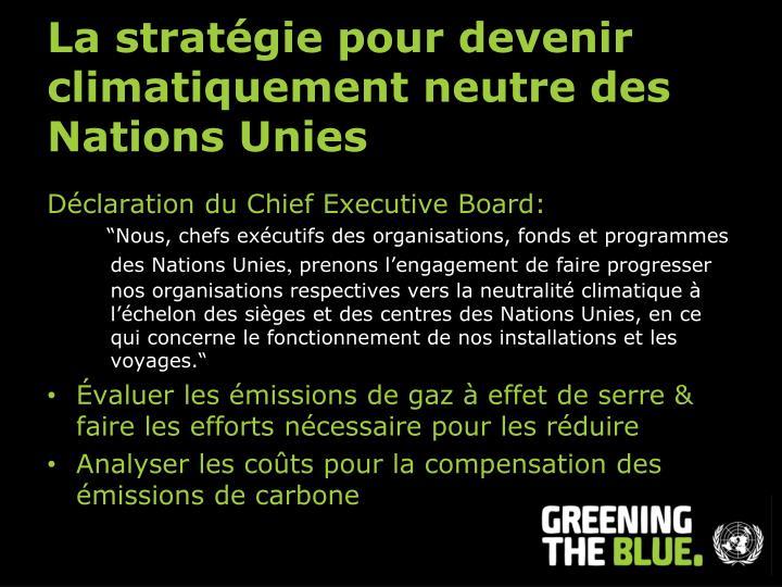 La stratégie pour devenir climatiquement neutre des Nations Unies
