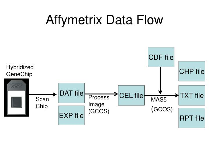 Affymetrix Data Flow