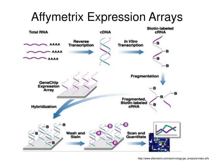 Affymetrix Expression Arrays