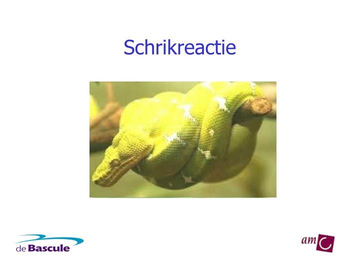 Schrikreactie