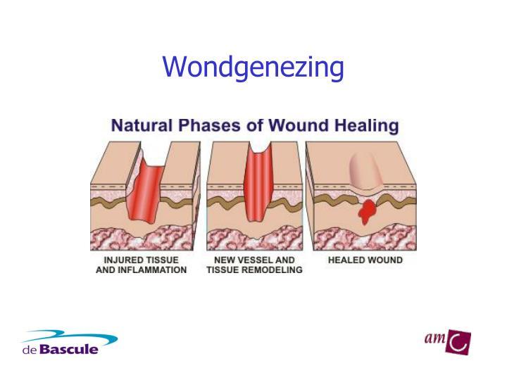 Wondgenezing