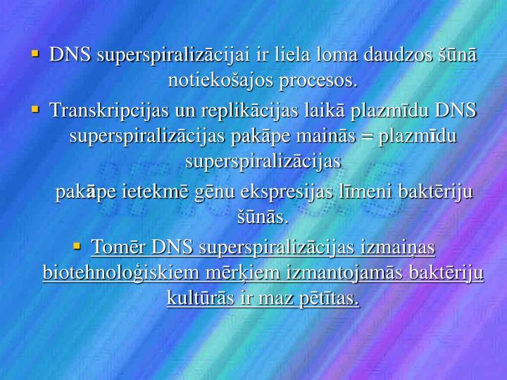 DNS superspiraliz