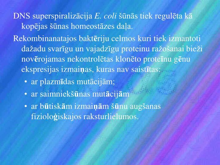 DNS superspiralizācija