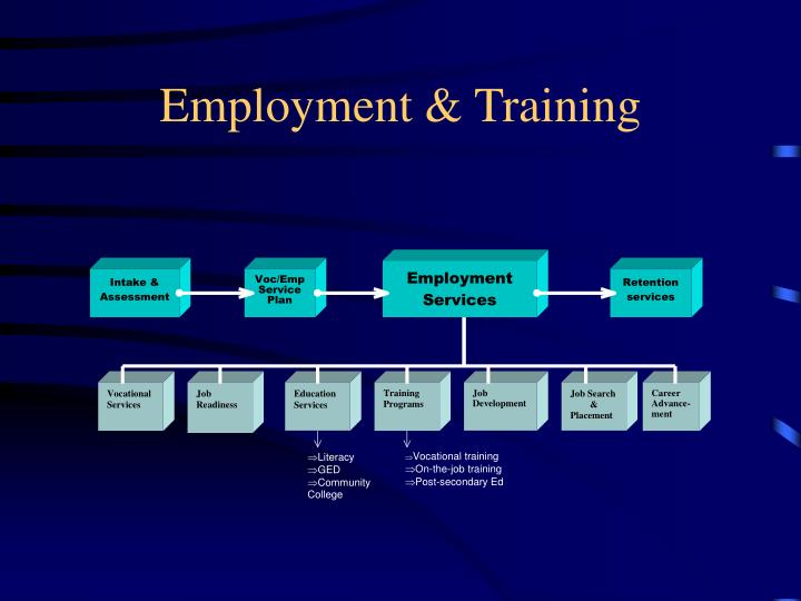 Employment & Training
