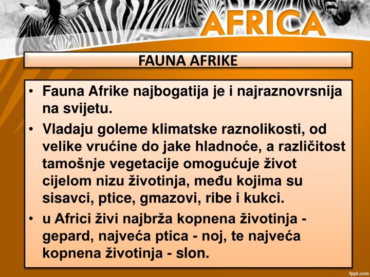 FAUNA AFRIKE