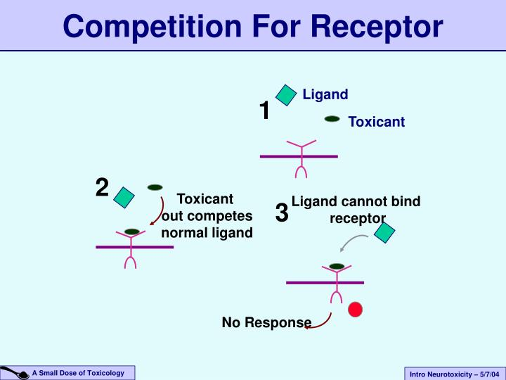 Competition For Receptor