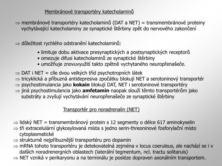 Membránové transportéry katecholaminů