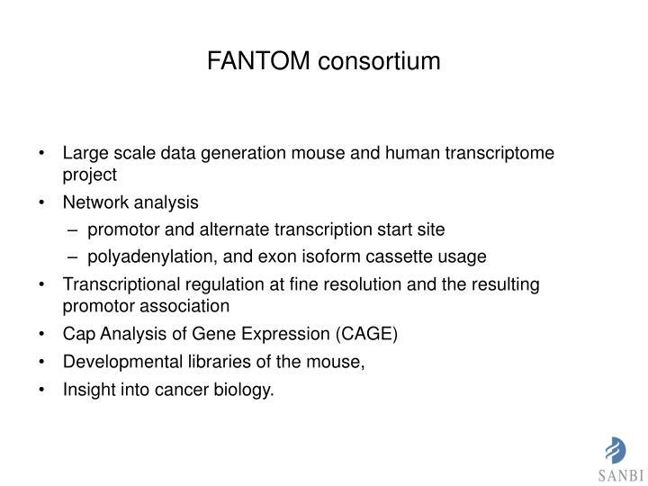 FANTOM consortium