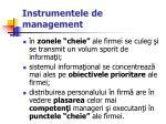 instrumentele de management29