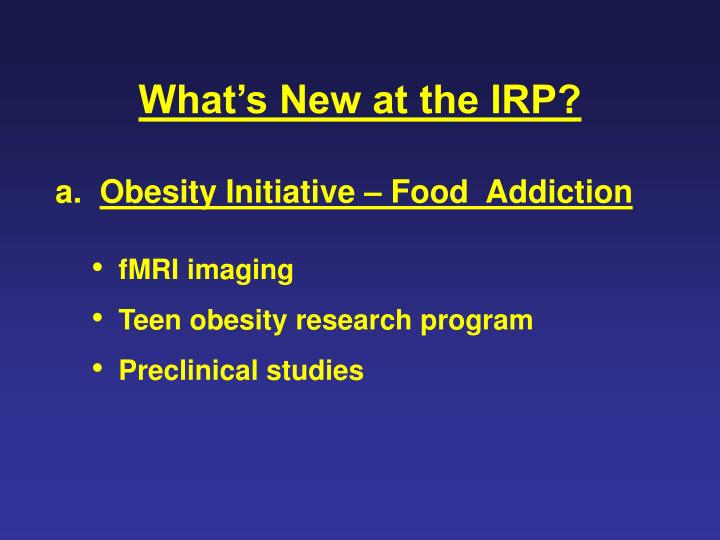 What's New at the IRP?