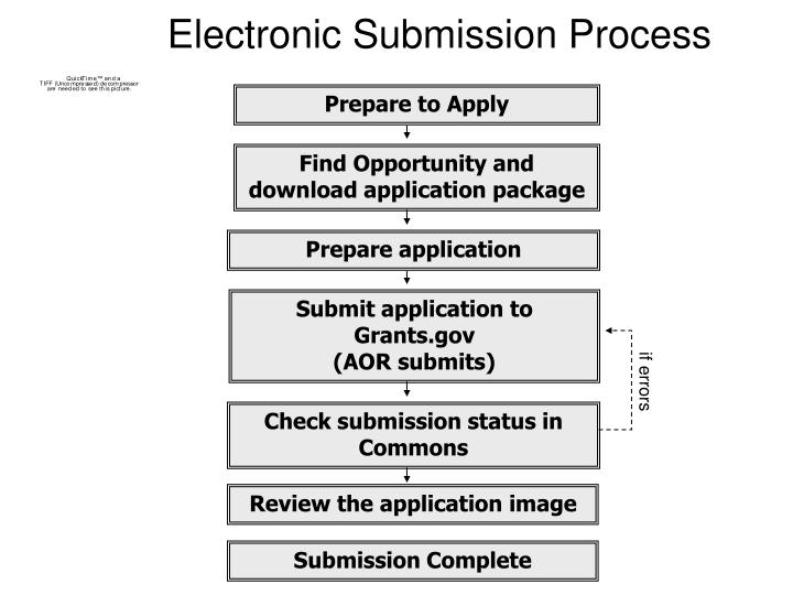 Electronic Submission Process