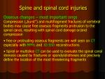 spine and spinal cord injuries4