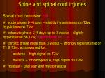 spine and spinal cord injuries9