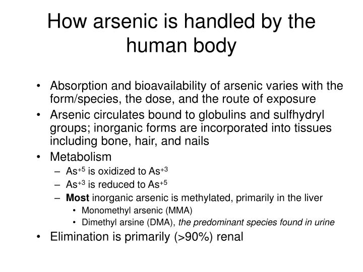 How arsenic is handled by the human body