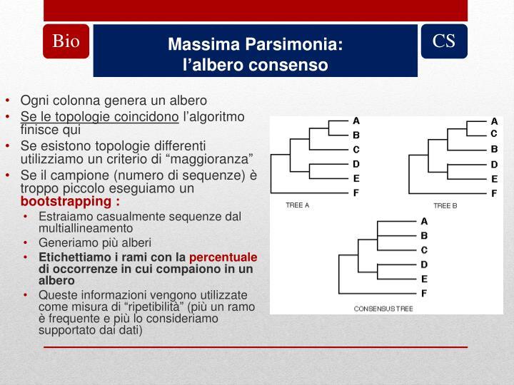 Massima Parsimonia: