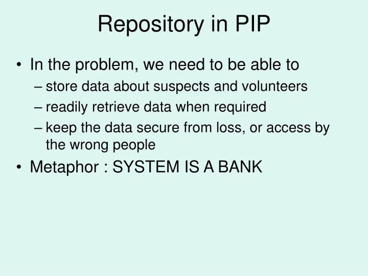 Repository in PIP