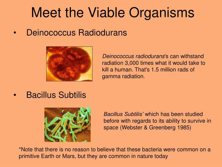 Meet the Viable Organisms