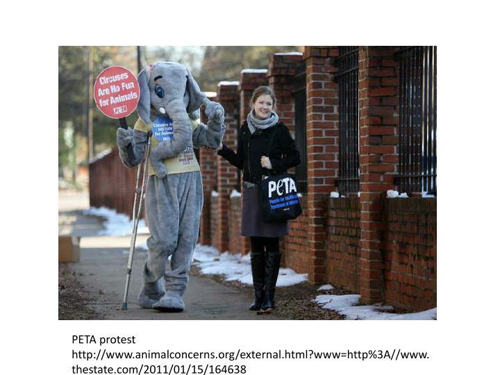 PETA protest