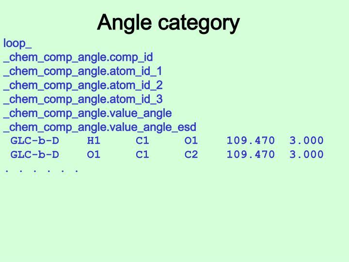 Angle category