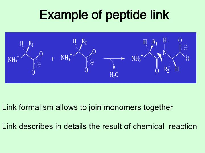 Example of peptide link