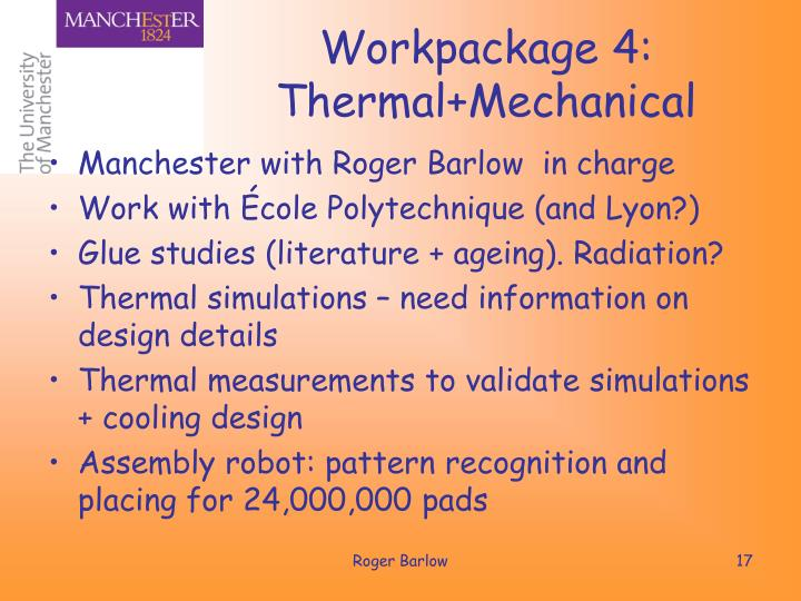 Workpackage 4: Thermal+Mechanical