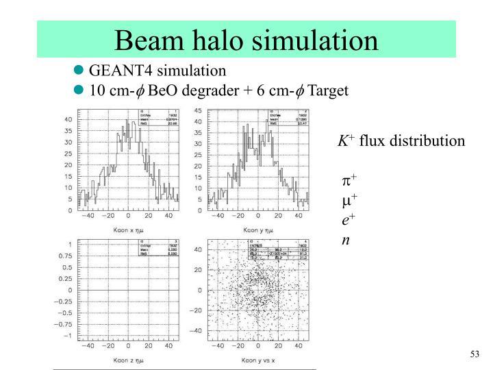 Beam halo simulation