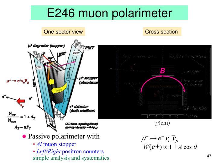 E246 muon polarimeter