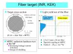 fiber target inr kek