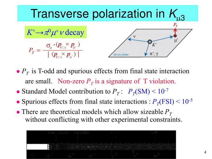 Transverse polarization in