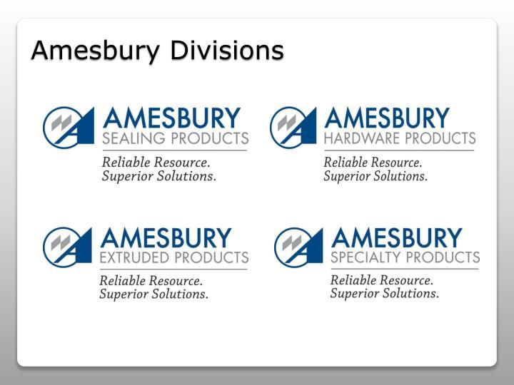Amesbury Divisions