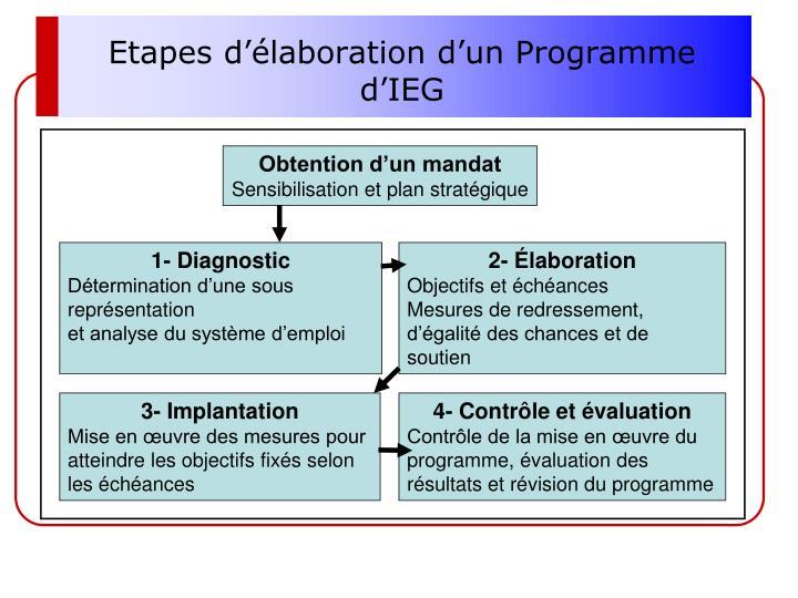 Etapes d'élaboration d'un Programme d'IEG