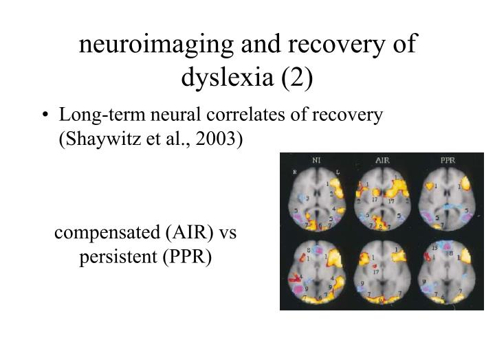 neuroimaging and recovery of dyslexia (2)