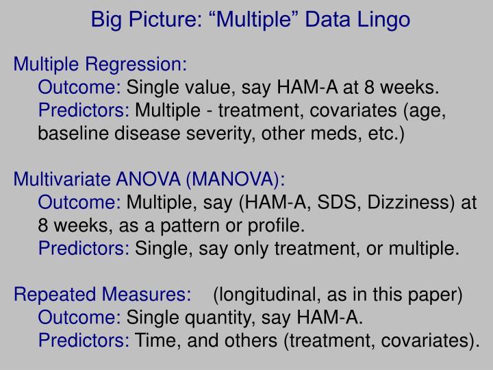 "Big Picture: ""Multiple"" Data Lingo"