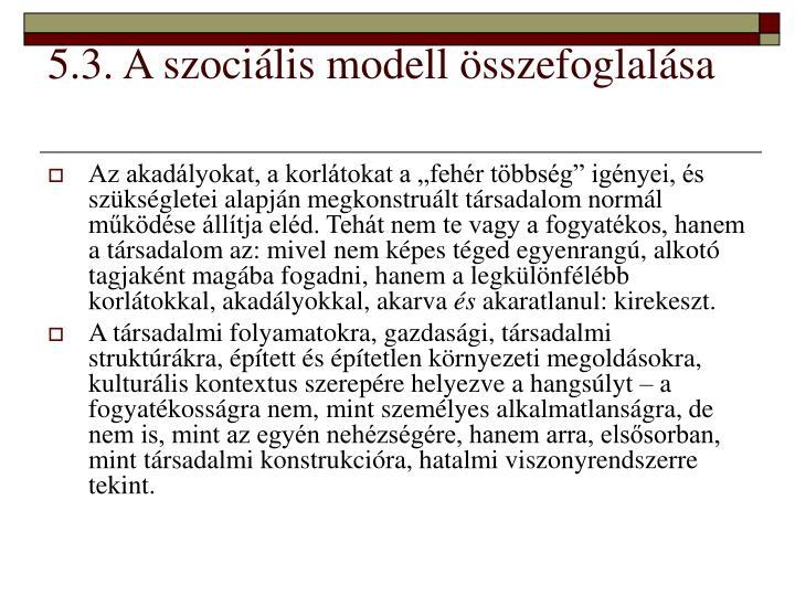 5.3. A szociális modell összefoglalása