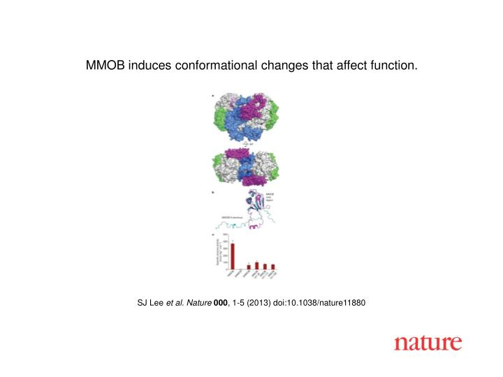 MMOB induces conformational changes that affect function.