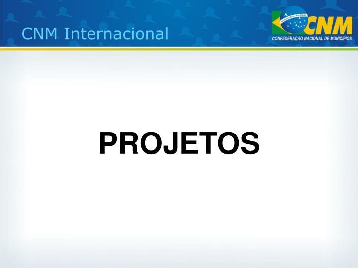 CNM Internacional