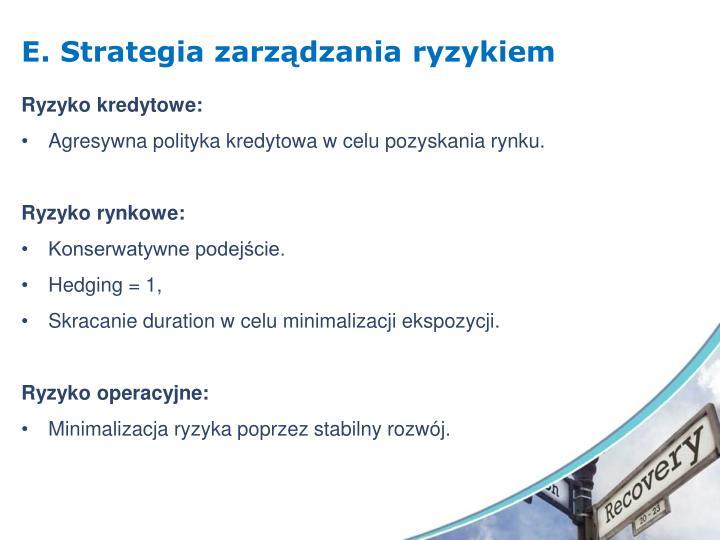 E. Strategia zarządzania ryzykiem