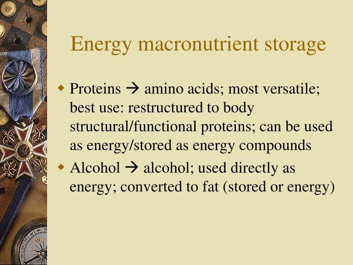 Energy macronutrient storage