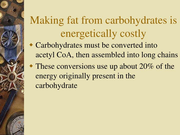 Making fat from carbohydrates is energetically costly