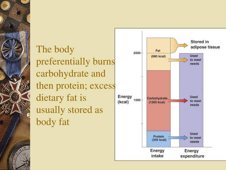 The body preferentially burns carbohydrate and then protein; excess dietary fat is usually stored as body fat