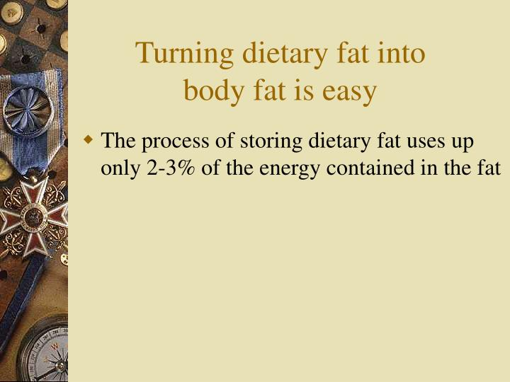 Turning dietary fat into