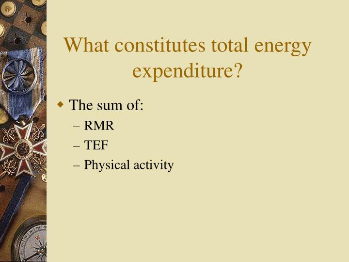 What constitutes total energy expenditure?