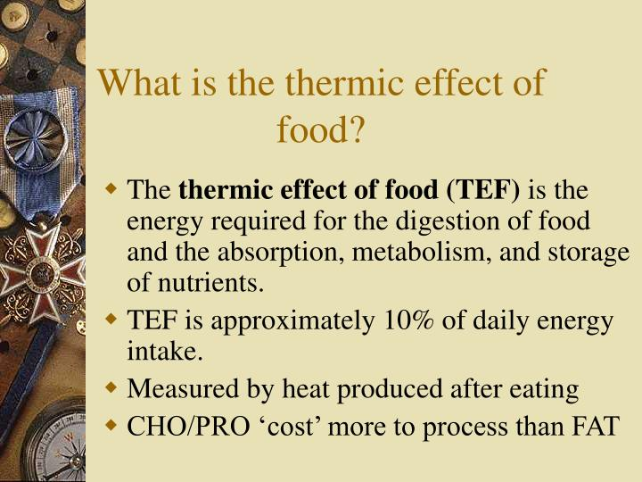 What is the thermic effect of food?