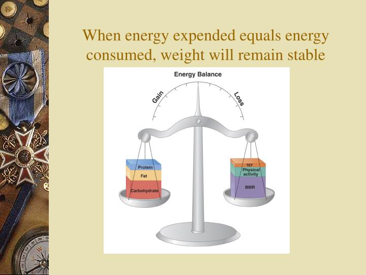 When energy expended equals energy consumed, weight will remain stable