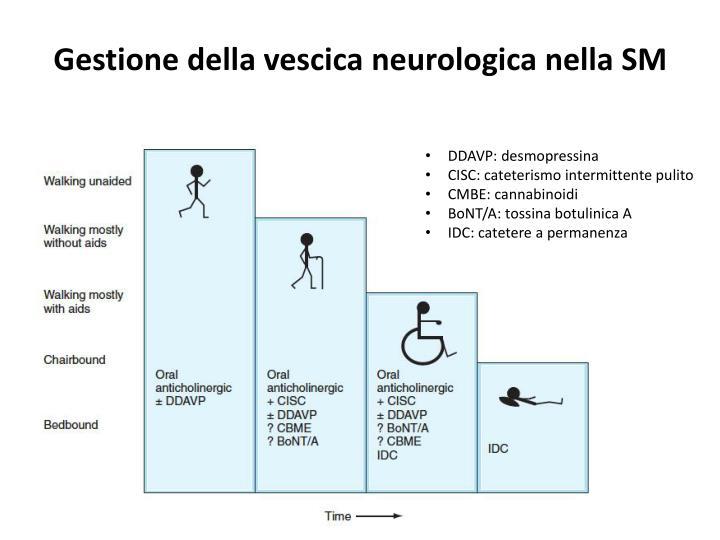 Gestione della vescica neurologica nella SM