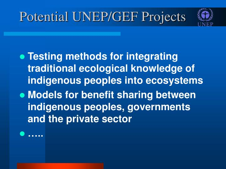 Potential UNEP/GEF Projects